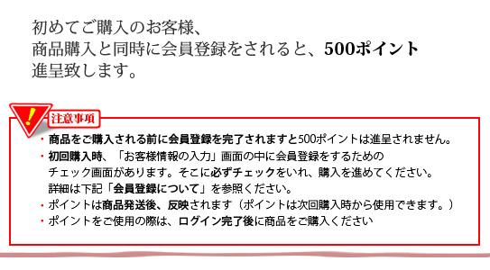 新規登録で500ポイント進呈